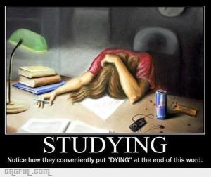 1347619043_studying_gag